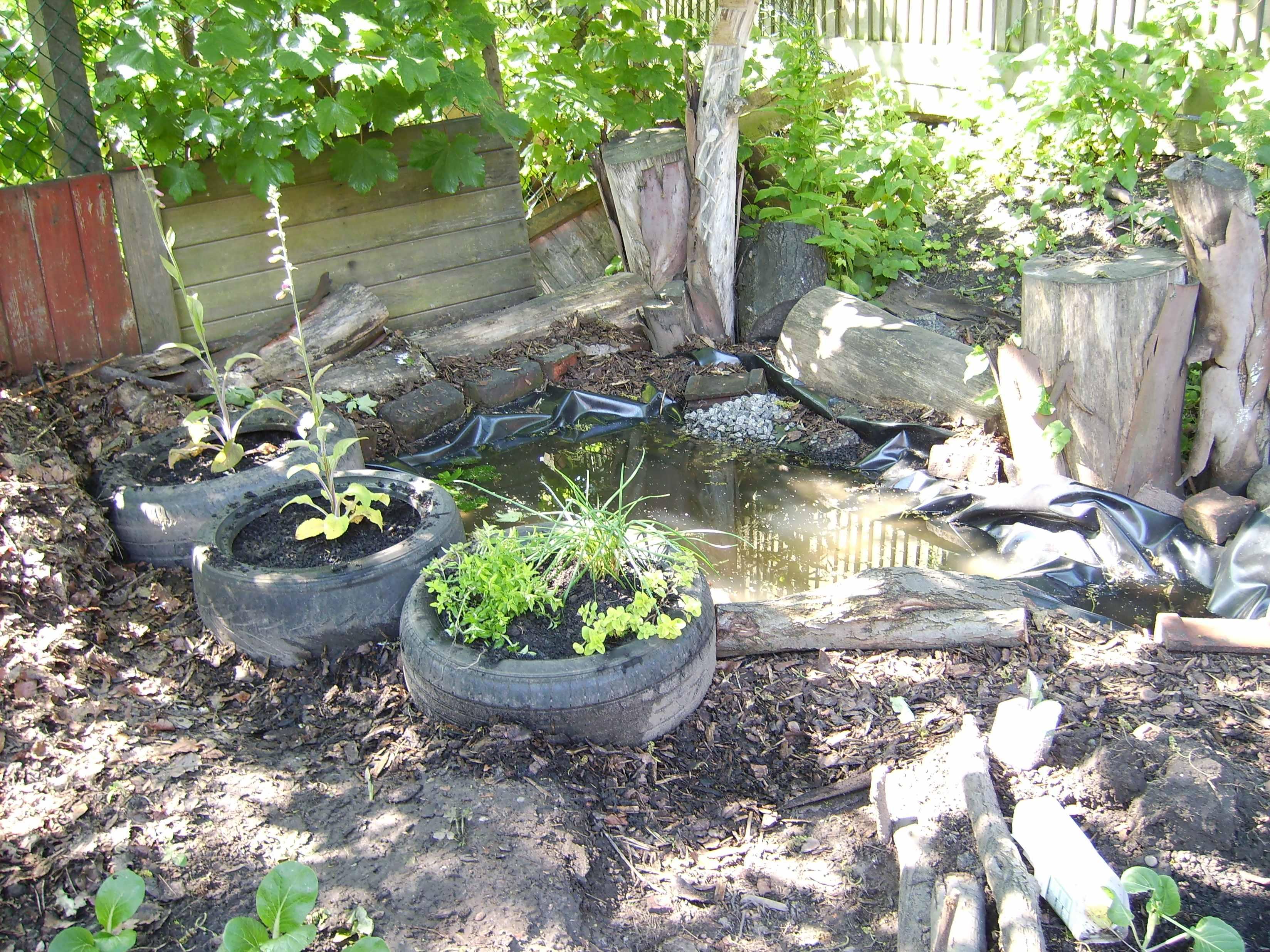 Pond- finished