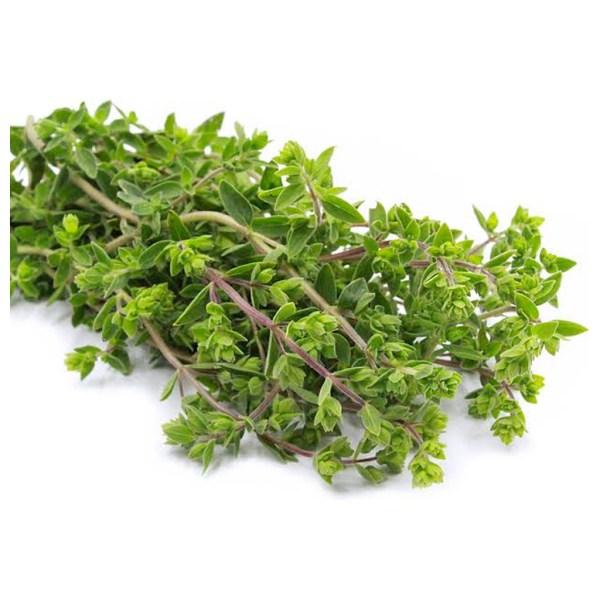 Fresh Organic Marjoram Herb