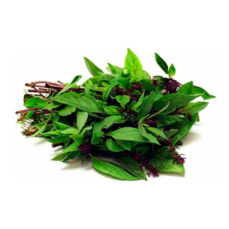 Fresh Organic Thai Basil Herb