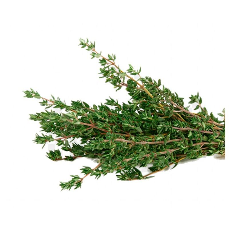 Fresh Organic Thyme Herb