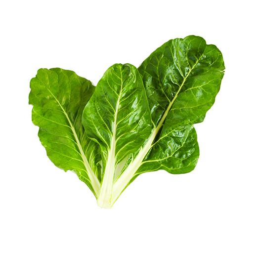 Fresh Organic Swiss Chard Vegetable Spinach