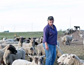 11821_Jan-with-Sheep.jpg