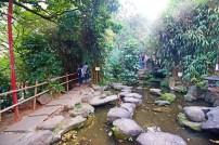 Jardim Japonês com karpas e cachoeira.