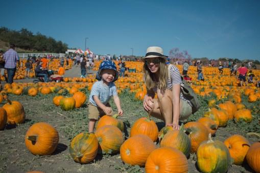 pumpkin-patch-7-of-20