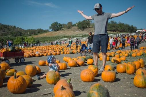 pumpkin-patch-9-of-20