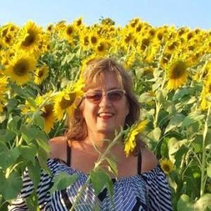 Barb sunflowers