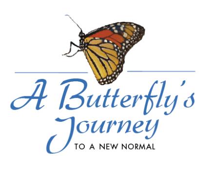 ABJ Summer'16 Newsletter