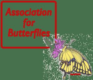 Association for Butterflies Logo
