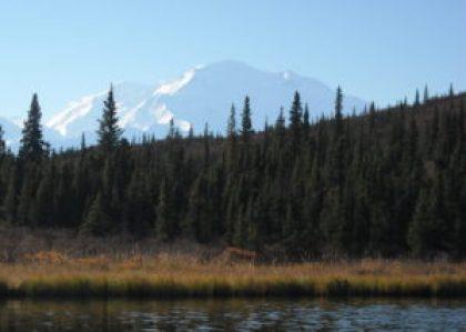 View of Denali from Wonder Lake