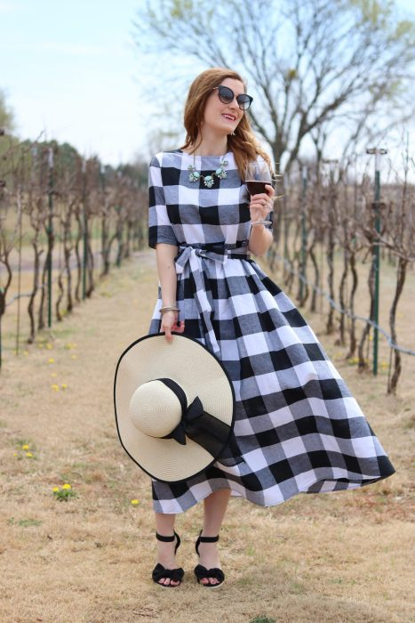 Shein Buttoned Keyhole Self Tie Checkered Dress | Gingham dress | gingham dress outfit| winery outfit spring| winery outfit spring wine tasting | wine tasting outfit | gingham dress blue necklace | OKC Winery | Clauren Ridge Winery
