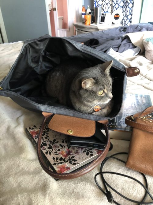 packing tips | carry on packing | HOW TO PACK ONLY A CARRY-ON FOR A 2 WEEK VACATION| HOW TO PACK FOR VACATION