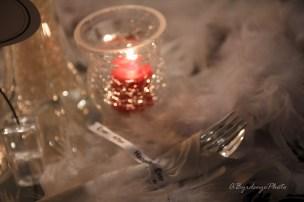 Toledo Intimate Wedding Reynolds Reception Hall_-60