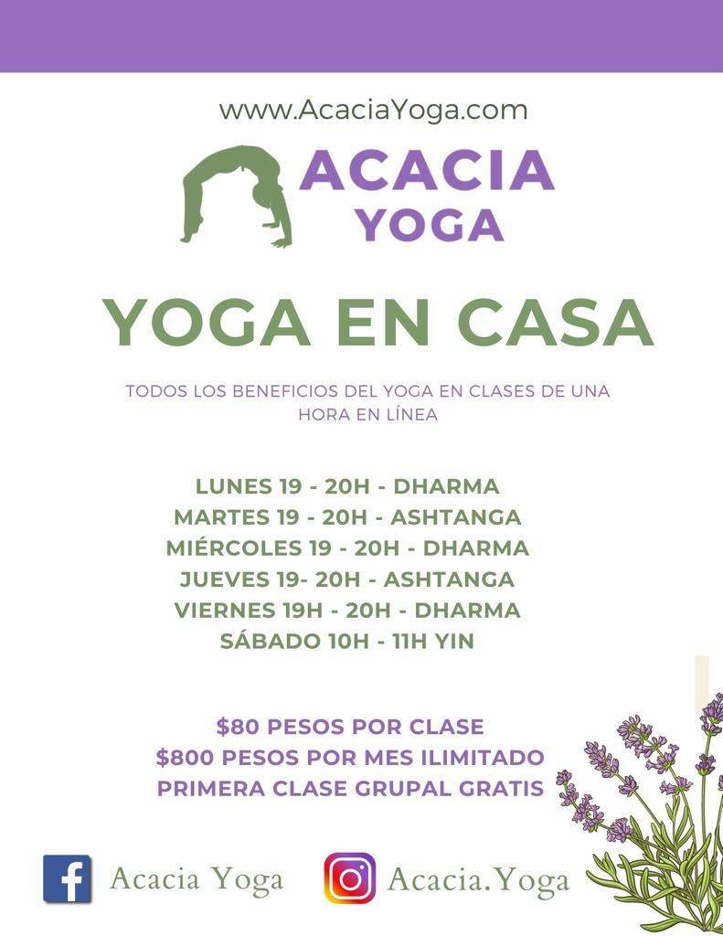 Acacia Yoga