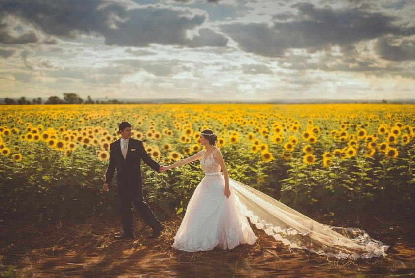 bride, couple, field