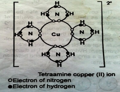 formation-of-tetraamine-copper-ii-ion-by-co-ionic