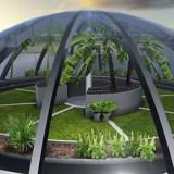 Экологический контроль: основные понятия
