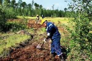 Рекультивация нарушенных и загрязнённых земель