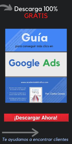 Guía Google Ads