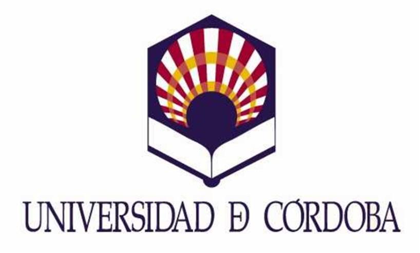 Reabierta convocatoria 22 plazas Auxiliar Administrativo Universidad Córdoba