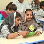 Establish 300 Model Schools