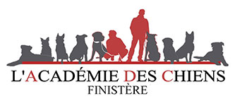 Académies des chiens 29