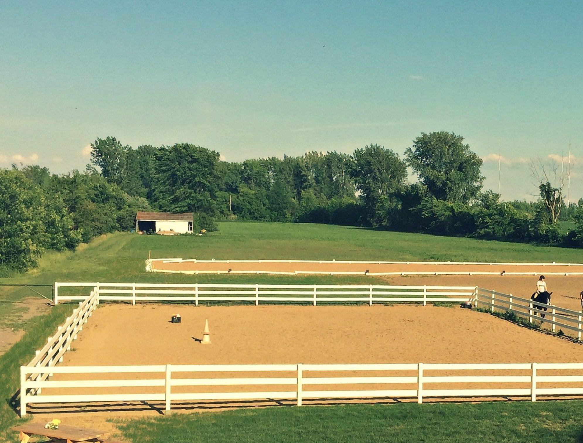 Cours d'équitation, selle classique, dressage et saut d'obstacles en Montérégie.