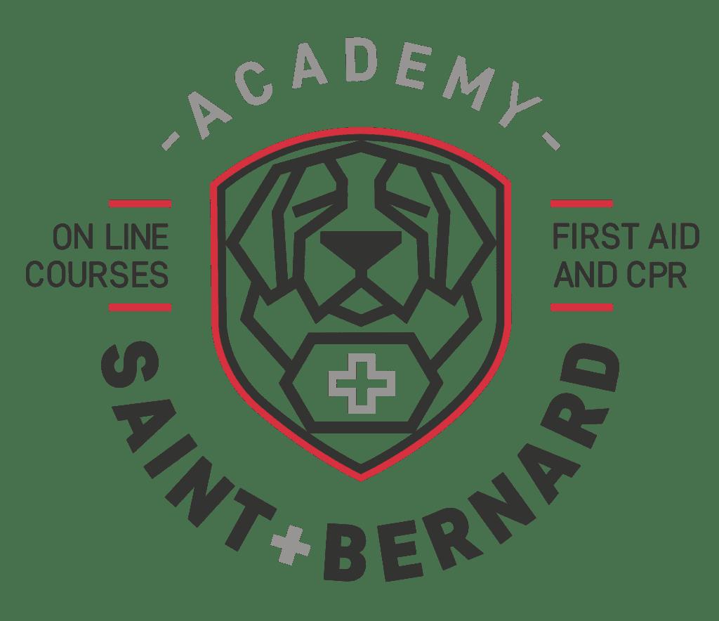 Saint-bernard Academy logo