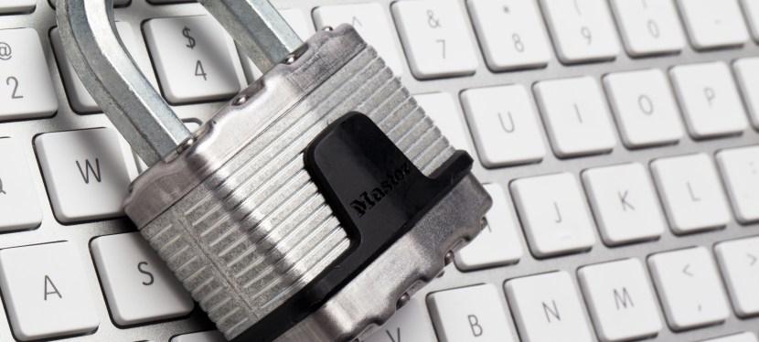 La protection de la vie privée dans la société de l'information