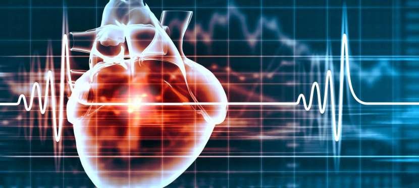 La prévention des maladies cardiovasculaires. Un enjeu majeur de santé publique.