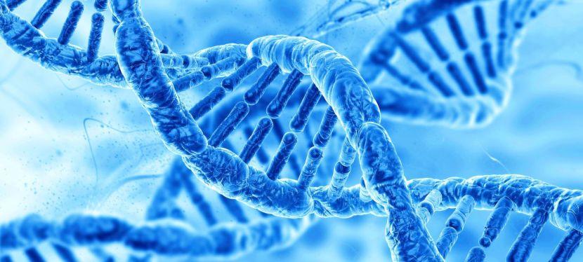 La médecine et la biologie d'aujourd'hui dans les universités et la recherche en France et dans le monde