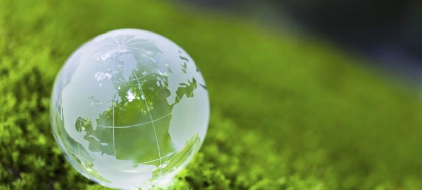 Quelle vision de l'homme pour un développement durable ?
