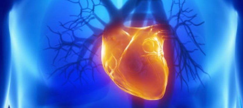 Daniel Loisance :  Le remplacement du coeur