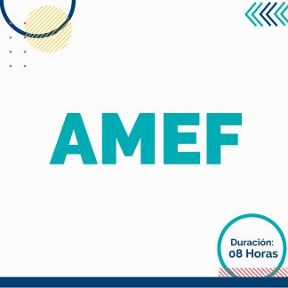 AMEF: Análisis de Modo y Efecto de Fallas
