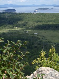 Cruise ship off the Porcupine Islands in Acadia National Park