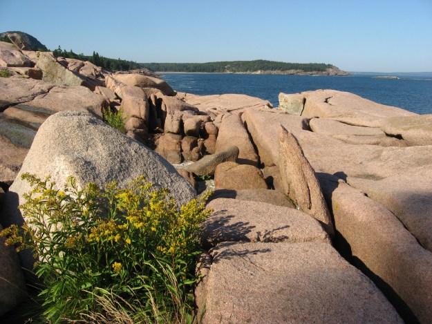 Ocean Path in Acadia National Park