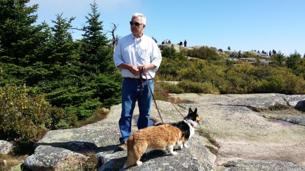 Dogs on Cadillac Summit Loop Trail