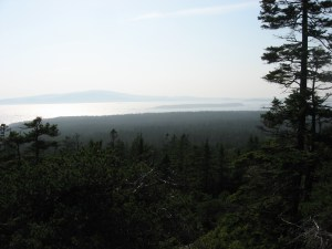 schoodic head trail