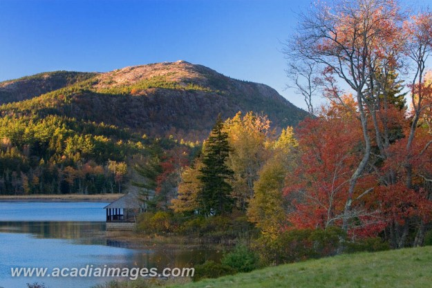 Fall foliage in Acadia
