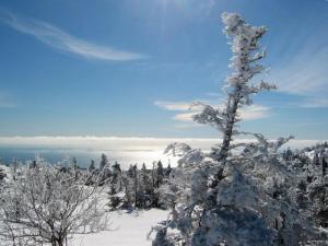 winter in acadia