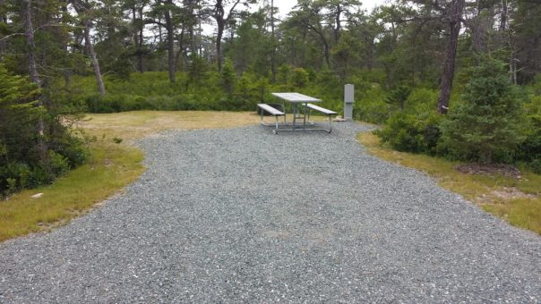 This photo shows tent site A-13 at Schoodic Woods.