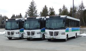 Three Island Explorer buses