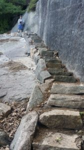 Stone staircase on the Valley Cove Trail at Acadia National Park