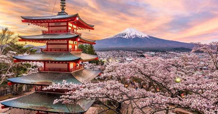 Un poco de cortesía japonesa nos viene bien — Vivo y Coleando