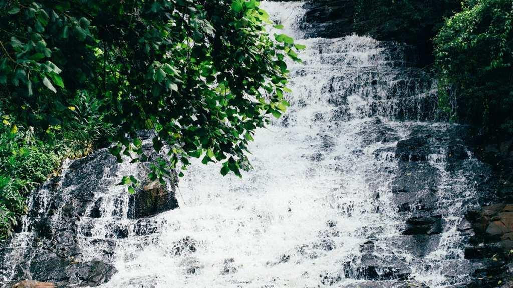 Cascada - Editorial Amarante