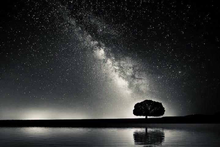No estés tan seguro. ¿Qué fue antes, la Vida o el Universo?