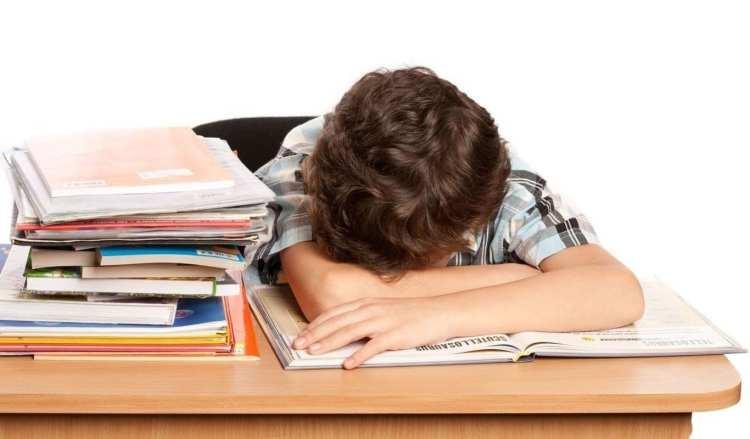 El fracaso escolar o la mala educación