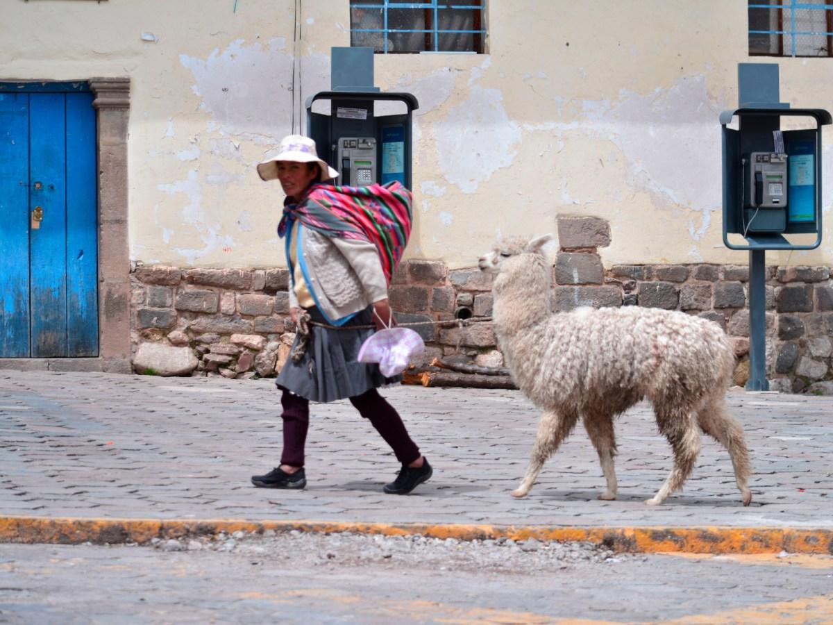 David Flecha - De Cusco a Aguascalientes