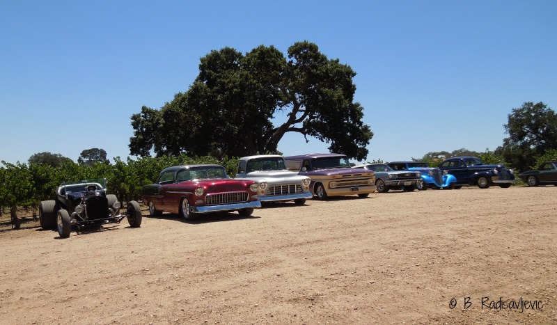 Classic Cars Get the Best Parking Places, Sculpterra Vineyards Decorated for July 4, © B. Radisavljevic