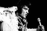 Elvis não morreu! Como é a vida de 3 covers 40 anos após a morte do cantor