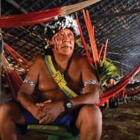 """O RECADO DA MATA - Eduardo Viveiros de Castro prefacia """"A Queda do Céu"""" de Davi Kopenawa e Bruce Albert"""